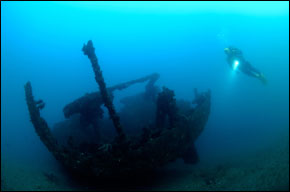 peacock ship wreck