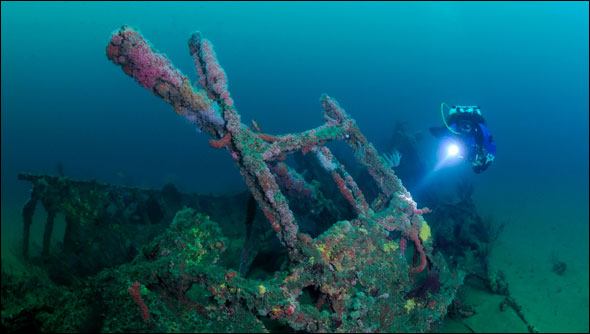 scuba diver exploring the USS Hogan wreck